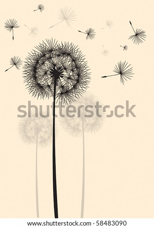 dandelion silhouette in the wind - stock vector