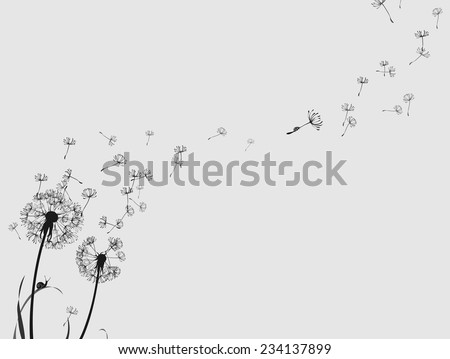 Dandelion silhouette snail and ladybug, black and white, horizontal format - stock vector