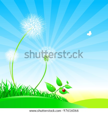 Dandelions on a summer meadow.Nature composition. - stock vector