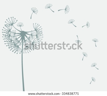 Dandelions on the grey background. Vector illustration