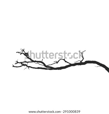 Dead branches. Vector Silhouette dry branch isolated on a white background
