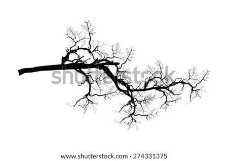 Dead Tree Branch Shape - stock vector