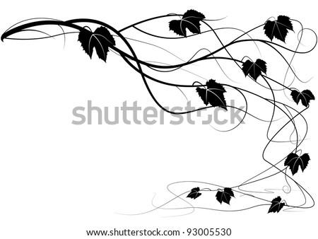 Decorative element creeper vine branches - stock vector