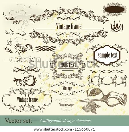 Decorative elements for elegant design. Calligraphic vector - stock vector