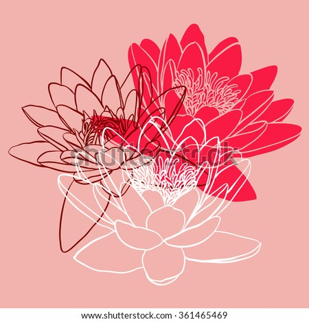 Decorative floral background with flowers of water lily - stock vector
