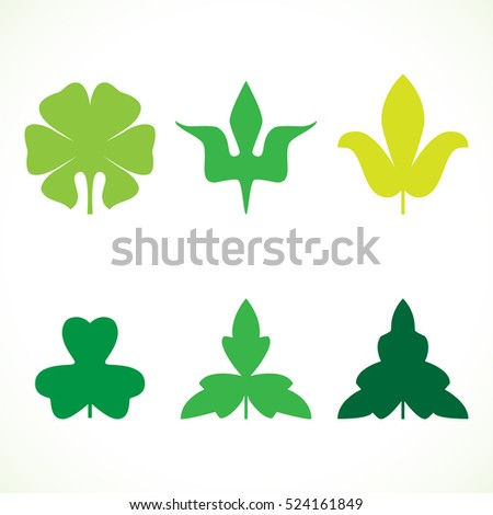 Decorative green leaves pattern set isolated on white vector. Various shapes of green leaves. Elements for eco and bio logos