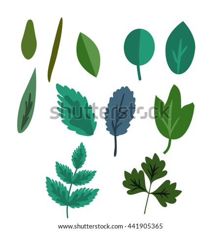 Decorative leaves simple vector set