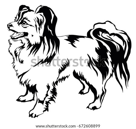 Afghan hound black white graphic drawing stock vector 726323377 decorative portrait of standing in profile dog papillon vector isolated illustration in black color on ccuart Choice Image