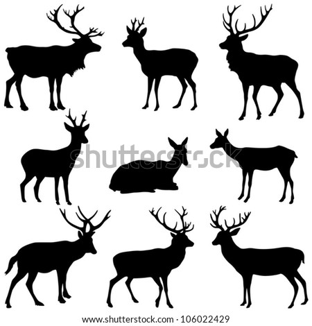 Deer collection - vector silhouette - stock vector
