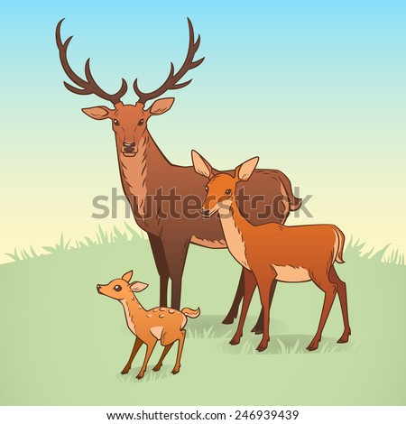 Deer family. A deer, a doe and a fawn. Vector illustration. - stock vector