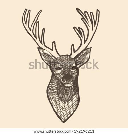deer head engraving style, vintage illustration, hand drawn - stock vector