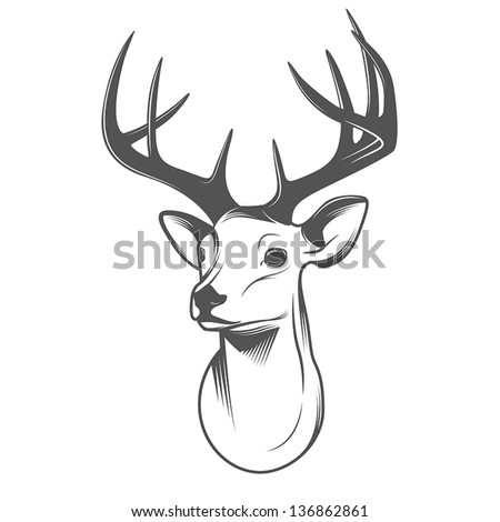 Deer head isolated on white background - stock vector