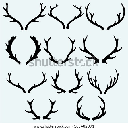 Deer horns. Isolated on blue background - stock vector