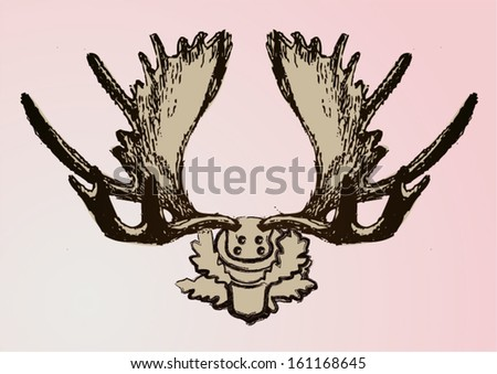 Deer horns on the wall vector illustration. Hand drawn. - stock vector