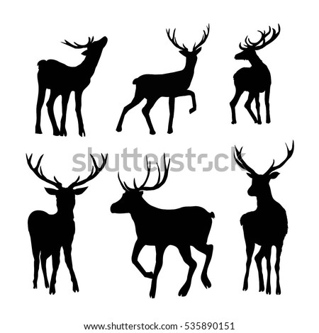 Search moreover Deer Horns 102489008 together with Deer Skull Drawing also 0511 0706 2215 2260 together with Deer Silhouette. on deer head silhouette with antlers