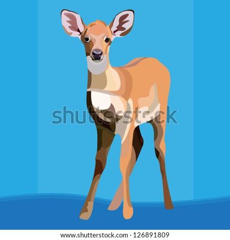 Deer species thai - stock vector