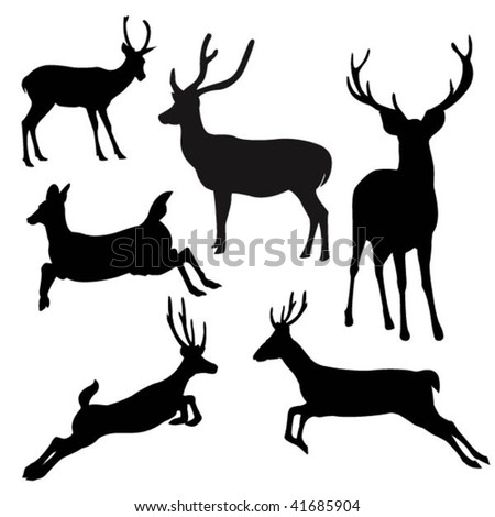 deer.vector - stock vector
