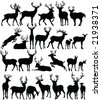 deers collection silhouettes - vector - stock photo