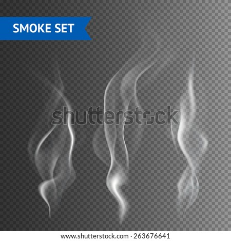 Delicate white cigarette smoke waves on transparent background vector illustration - stock vector