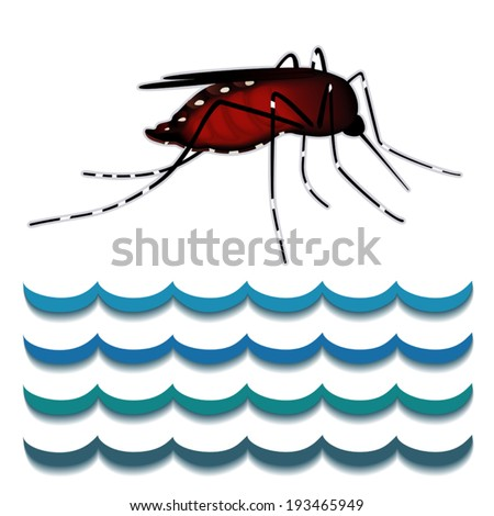 Dengue fever mosquito, standing water. EPS8 compatible. - stock vector