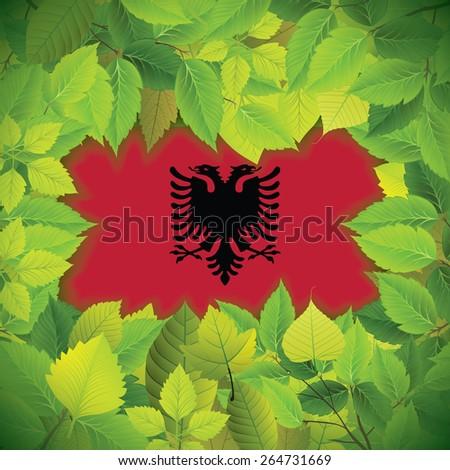Dense, green leaves over the flag of Albania - stock vector
