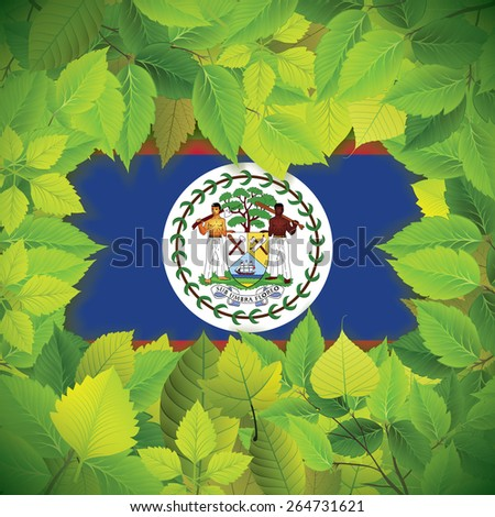 Dense, green leaves over the flag of Belize - stock vector