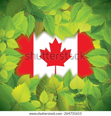 Dense, green leaves over the flag of Canada - stock vector