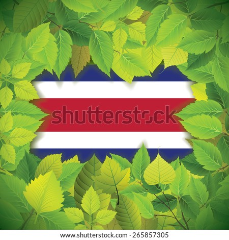 Dense, green leaves over the flag of Costa Rica - stock vector