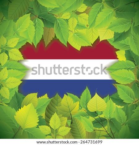 Dense, green leaves over the flag of the Netherlands - stock vector