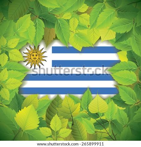 Dense, green leaves over the flag of Uruguay - stock vector