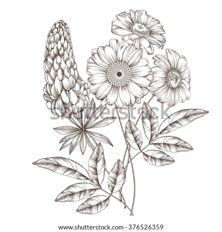 Description: Isolated image of a field  