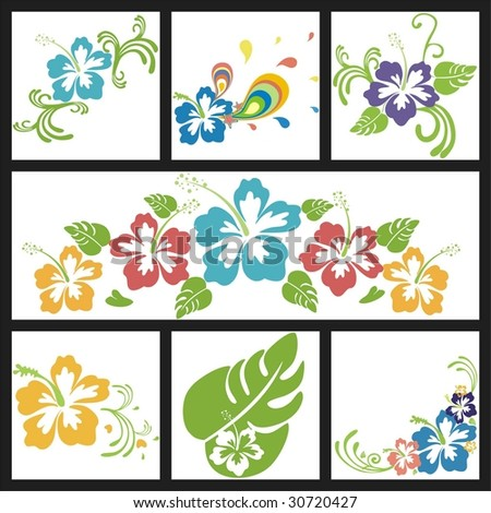 design with flowers of hibiscus - stock vector
