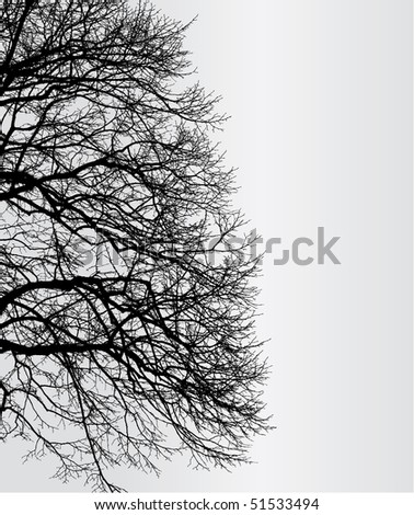 detailed branches of tree - vector file