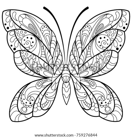 Detailed Butterfly Drawing Coloring Book Adults Stock Vector ...