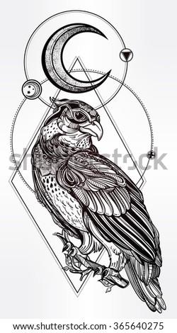 Detailed hand drawn bird of prey. - stock vector