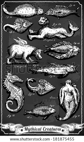 Detailed Illustration of a Vintage Set of Mythical Creatures on Blackboard - stock vector