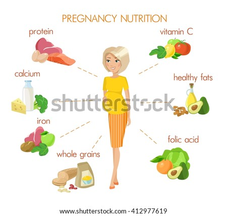 Detailed pregnancy nutrition infographic - stock vector