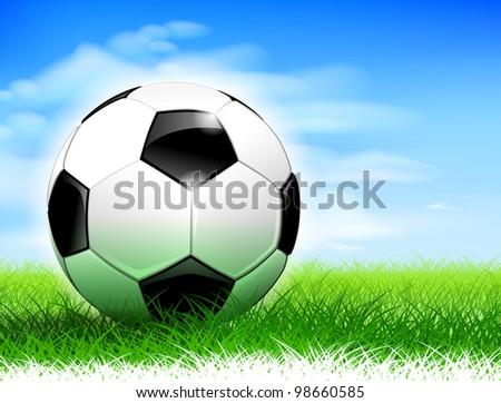 Detailed soccer ball on lush soccer field. - stock vector