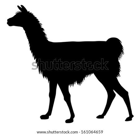 Detailed vector illustration of llama silhouette - stock vector