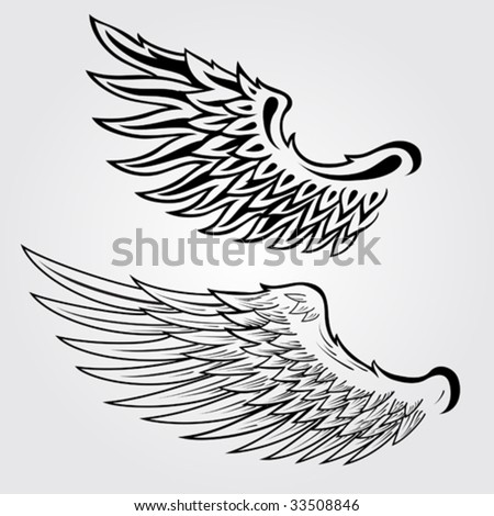 Detailed Vector Wings Illustration - stock vector