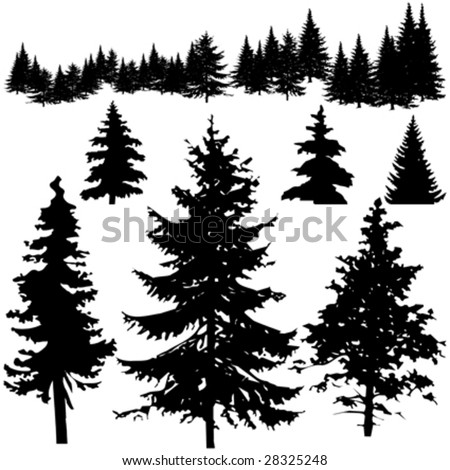 Detailed vectoral pine tree silhouettes.