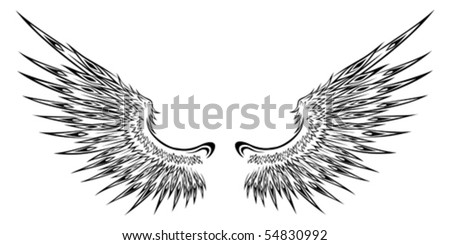 Detailed wing illustration - stock vector