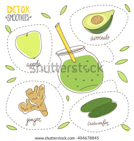 Detox diet. Hand drawn vector illustration of green detox smoothies. Illustration of green detox smoothie recipe with ingredients. Avocado, cucumber, apple, ginger cocktail . Smoothies for fitness