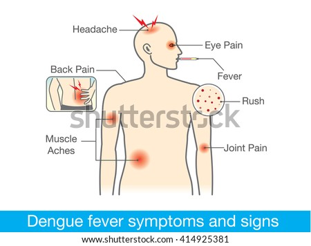 the signs symptoms and prevention of typhoid fever Prevention of typhoid fever  treatment and prevention of typhoid fever lymphoid tissue other typhoid bacilli are drained  the symptoms and signs of intestinal.