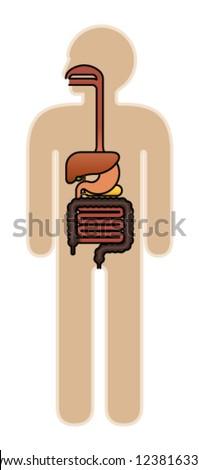 Diagram: human body digestive system. - stock vector