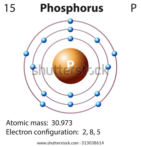 Diagram representation element phosphorus illustration stock vector diagram representation of the element phosphorus illustration ccuart Choice Image