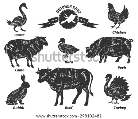 Diagrams for butcher shop. Animal silhouette, beef and cow, turkey and goose, pork and sheep. Vector illustration - stock vector