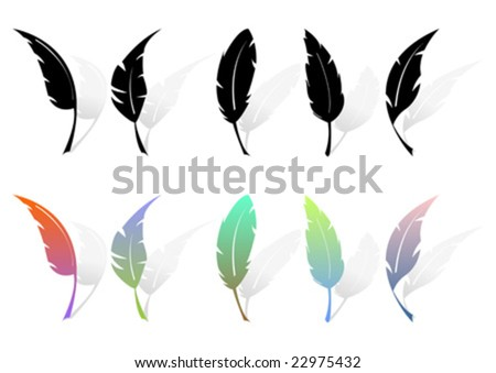 Different feather silhouettes and colored feathers over white - stock vector