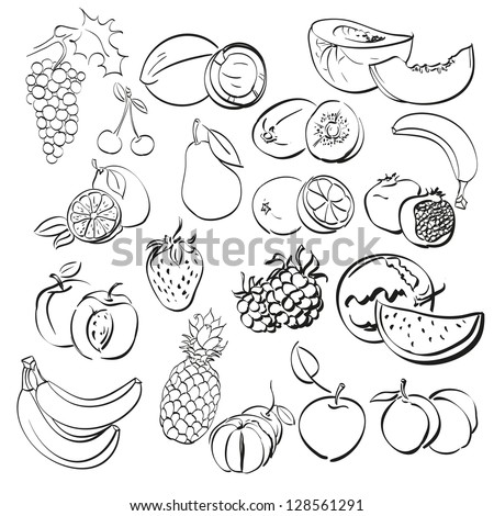 different fruits set isolated on white . vector illustration - stock vector