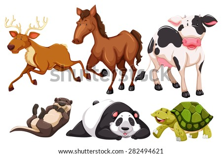 Different kind of animals in the zoo - stock vector